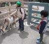 上野動物園両親2.jpg