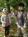 りんご狩り写真.jpg