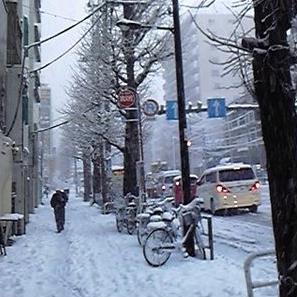 http://yamadakohei.jp/blog_upfile/%E5%86%AC%E5%A0%B4%E6%AD%A9%E9%81%93.JPG
